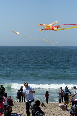 The 39th Annual Festival of the Kite attracted hundreds of kite fliers and spectators. Photo