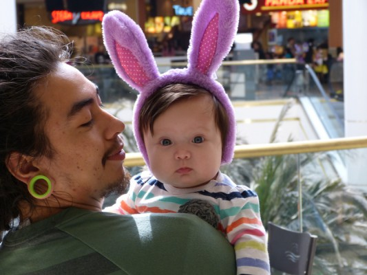 check out be285 65e53 A young Easter Bunny takes it all in at the South Bay Galleria last weekend.