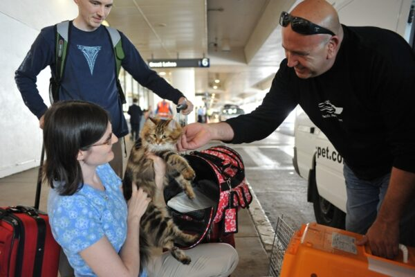 Miguel Fernandez does a cat pick-up at LAX. Photo by Chelsea Sektnan