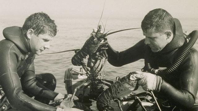 A Bob Meistrell lobster tale