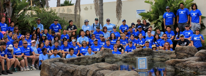 About 100 volunteers helped to clean up the SEA Lab on Saturday. Photo by Lauren Diethelm