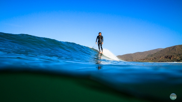 Perched in Solitude. Photo by Adam Reynolds of Bhbsurf.com