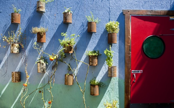 The Doma patio wall. Photo by Chelsea Schreiber