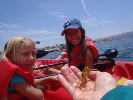 Sea Lab campers learn about marine life, up close.