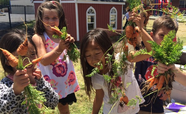 Kids from the Palos Verdes Peninsula Unified School District enjoy the fruits -- and vegetables -- of their labor in their school garden.