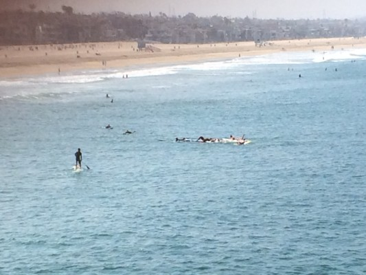 Swimmers and surfers work to bring the shark attack victim to shore. An unidentified man on a paddleboard is credited with pulling the victim up on his paddleboard so the victim would be brought to shore.  Photo by Leslie Stokes