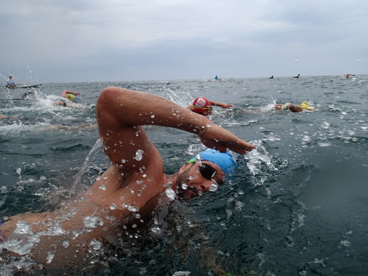 Over 1,000 swimmers competed in the 2014 Dwight Crum Pier to Pier Swim. Photo by Kevin Cody