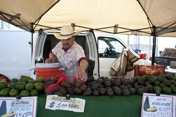 A vendor sells avocados at the farmers market on Valley Drive in Hermosa Beach. Photo by Chelsea Schreiber, staff.