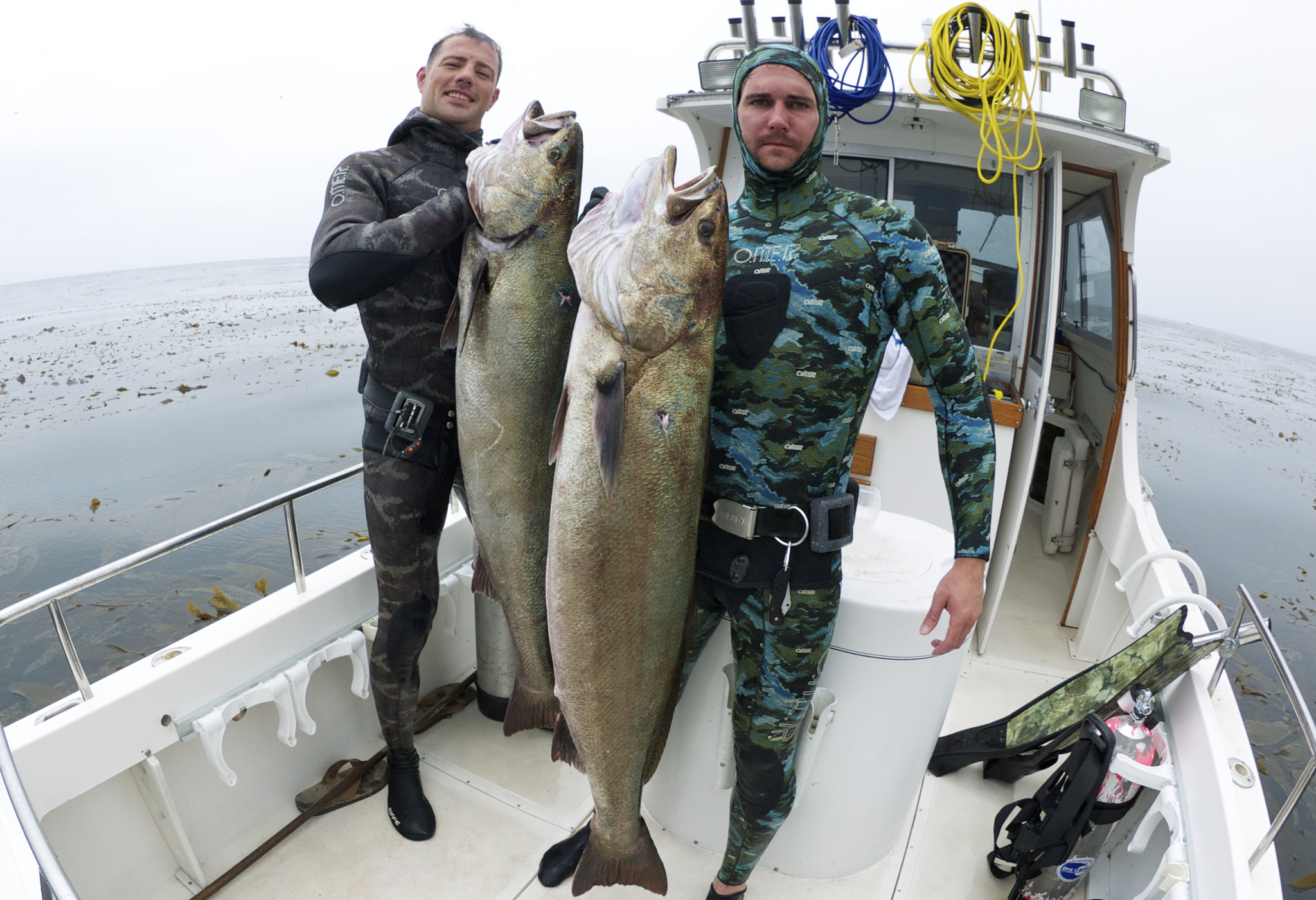 Kelp Klippings: 1st Annual Kirk McNulty White Seabass Spearfishing Classic