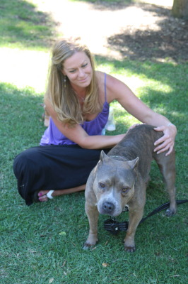 Animal reiki master Amelia Clemens gives reiki to Rosie, a four-year-old American Staffordshire Terrier in Polliwog Park in Manhattan Beach. Photo by Kelley Kim