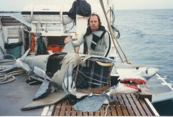 "The ""wounded"" Great White Paul built for Cousteau was realistic enough be attacked Australian sharks. Photo courtesy of Eddie Paul Industries"