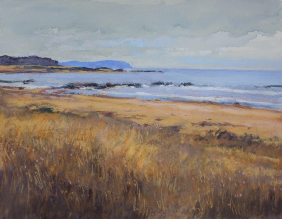 """Central Coast, North of Cambria,"" by Fran Nichols, at Destination: Art"