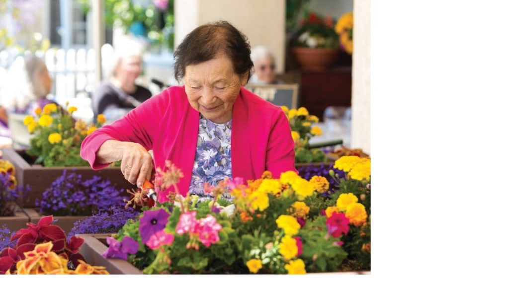 Senior taking care of flowers.