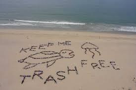 Monthly Beach Cleanup @ Cabrillo Marine Aquarium | Los Angeles | California | United States