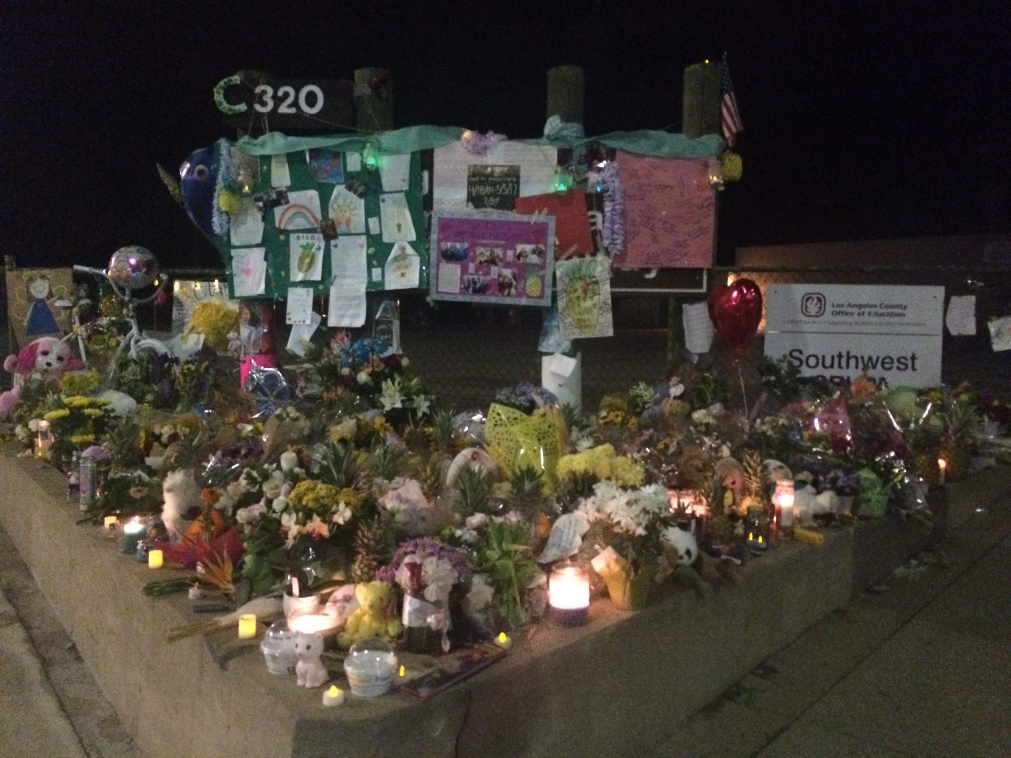 A highway tragedy: A 13-year-old girl is killed on PCH, and