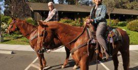 Spotlight on the hill – Annual Mayor's Equestrian Ride