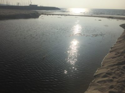 Heal the Bay report shows ocean water quality problems persist