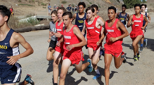 Local cross country runners facing tough competition ahead