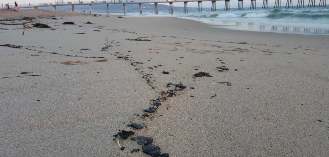 Guilty verdict in 2015 oil spill that brought  tar balls to South Bay