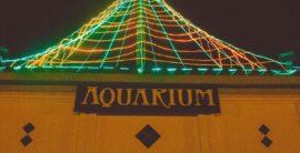Beach holidays – Manhattan Beach Pier Lighting