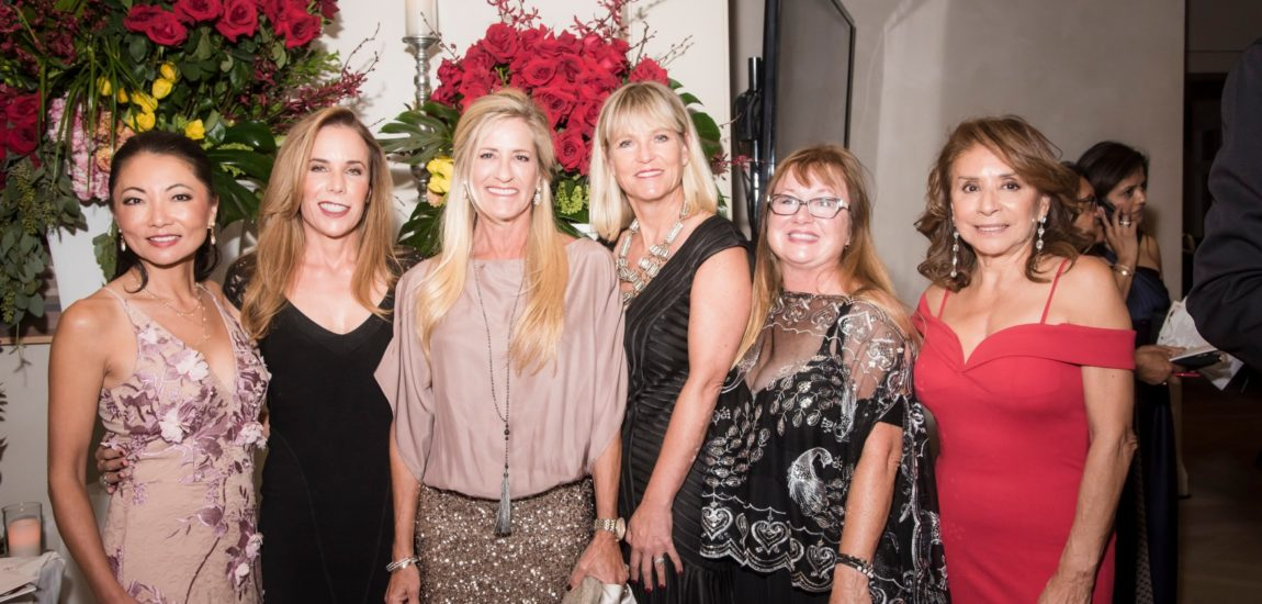 Spotlight on the hill – Vistas for Children Gala