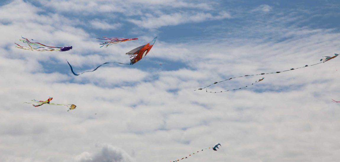 Fine family says farewell to Kite Festival