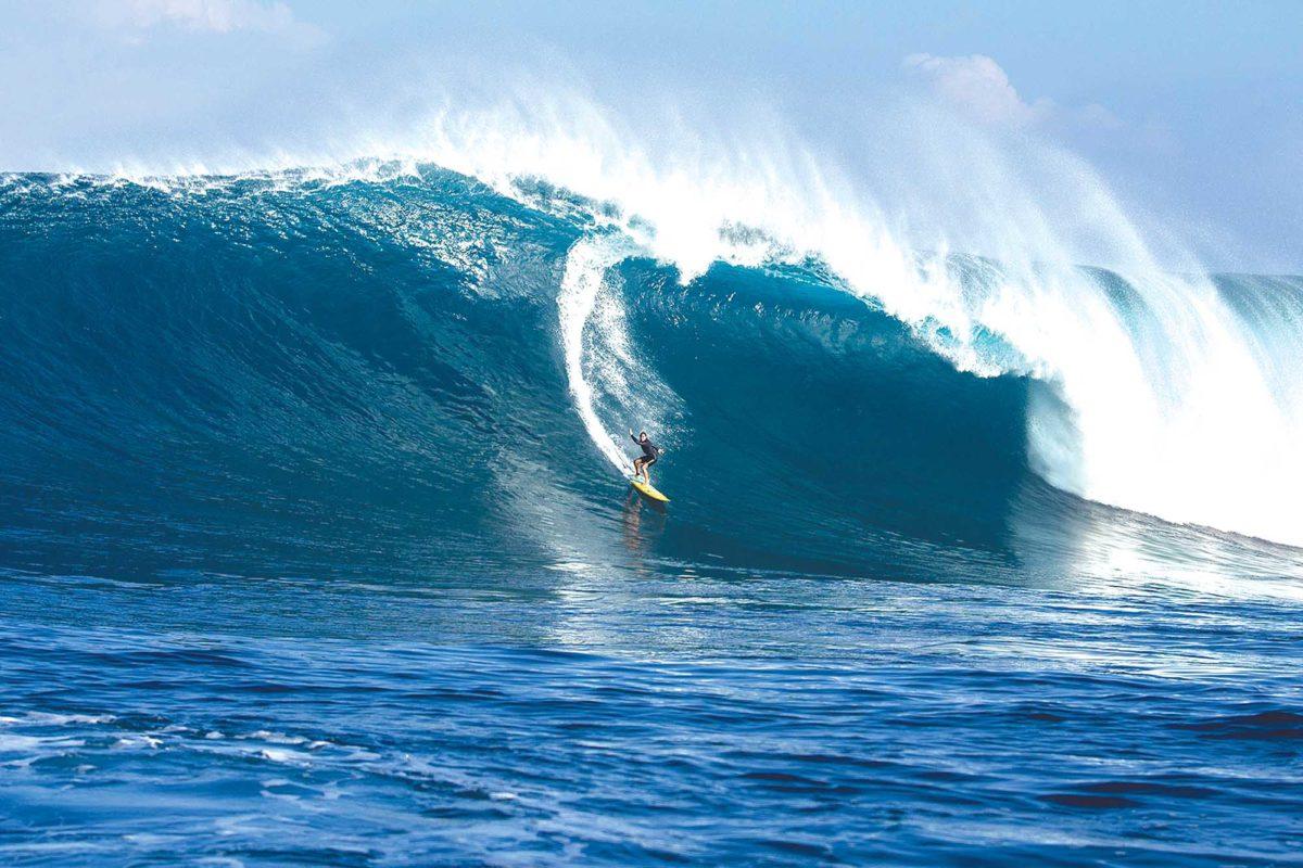 Beachlife Brings Big Wave Awards To South Bay Easy Reader News
