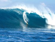 BeachLife brings Big Wave Awards to South Bay