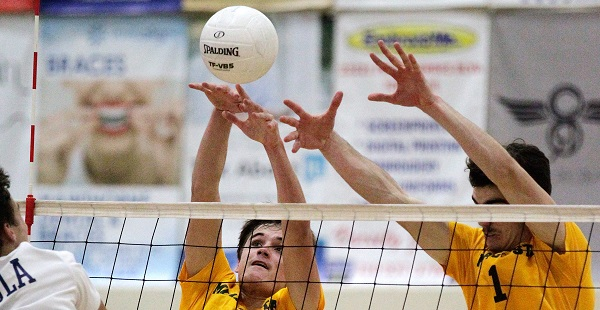 Bay League teams survive first round of CIF volleyball playoffs