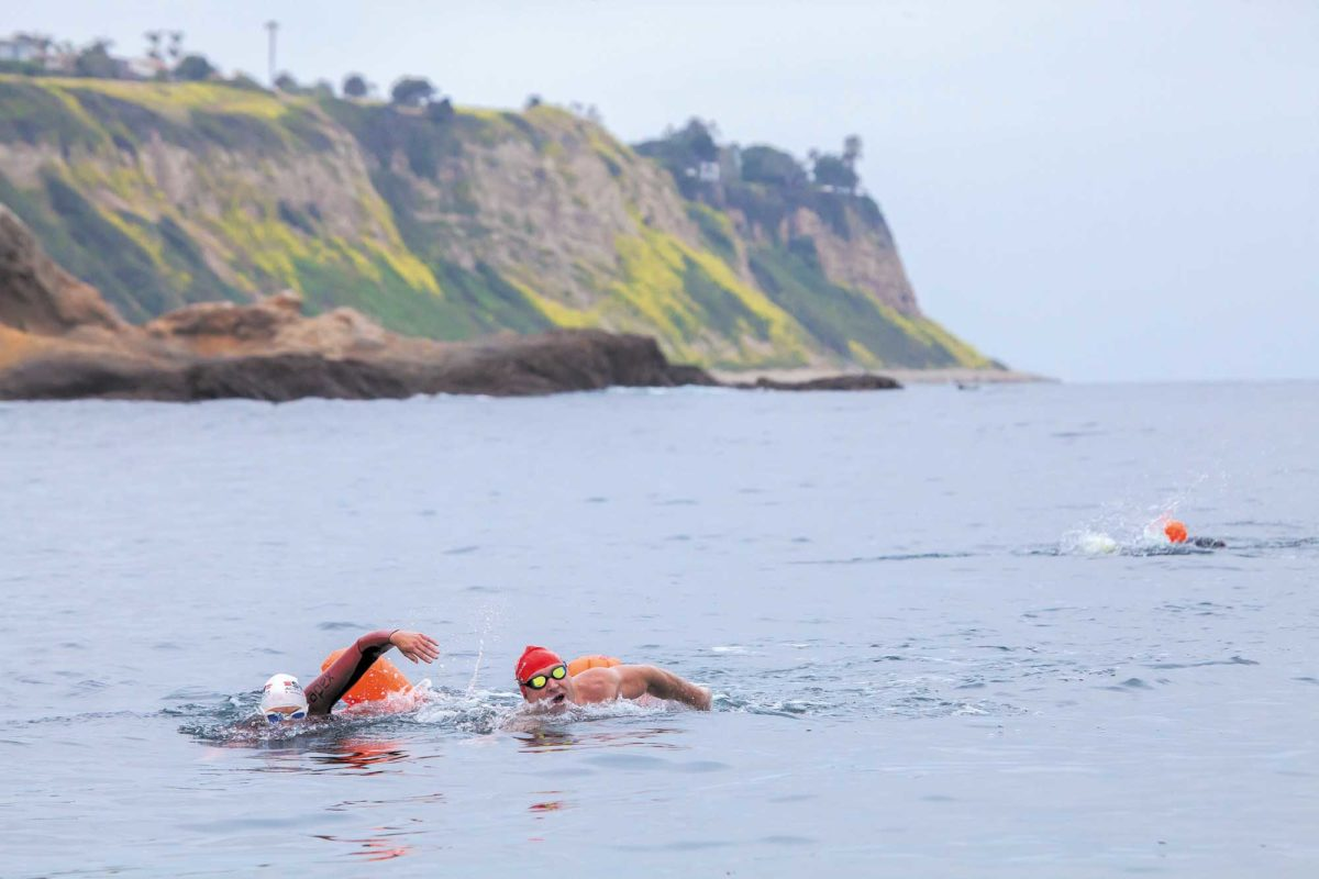 Redondo Beach This week's Swim the Avenues event hopes to